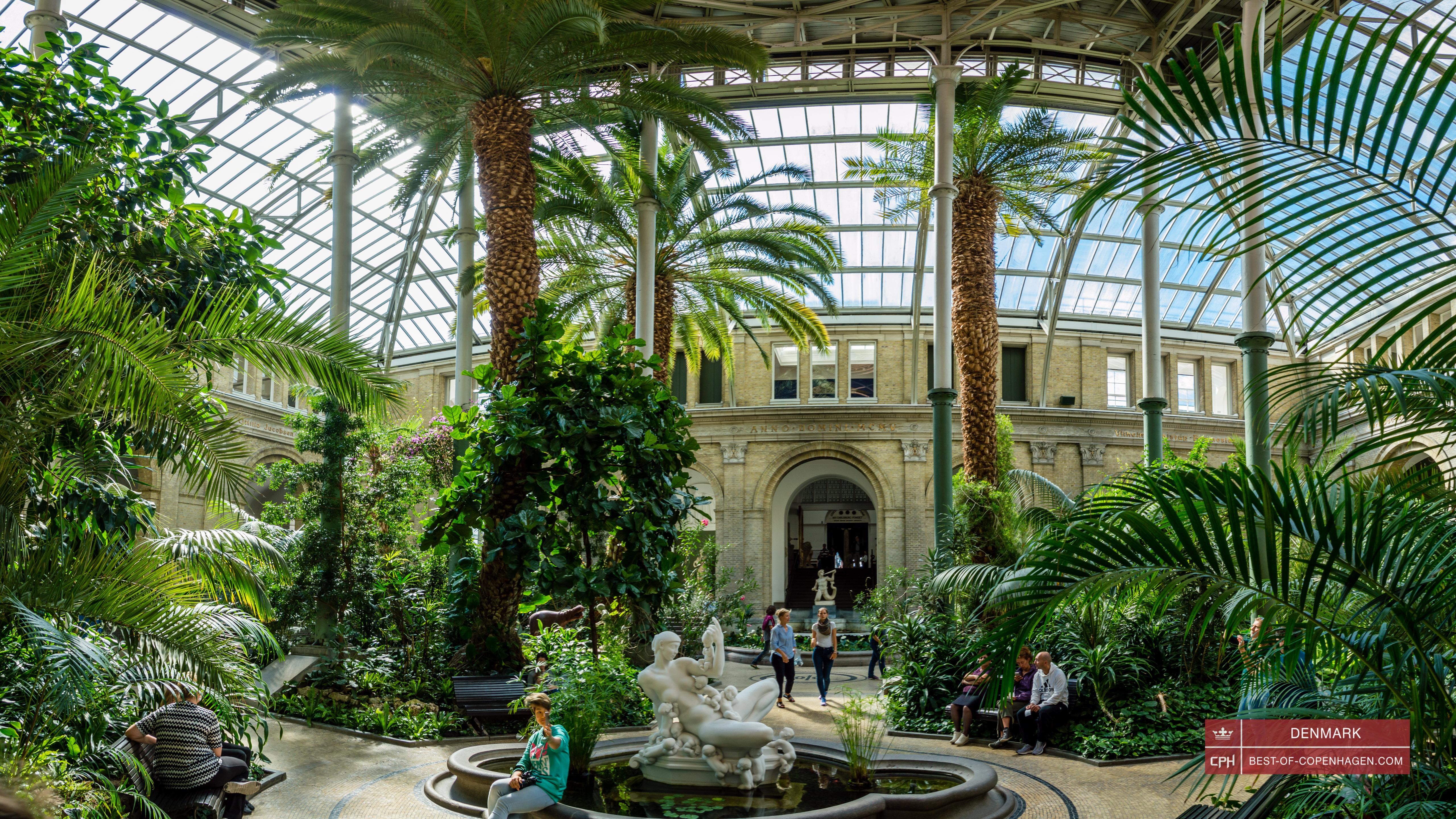 ny carlsberg glyptotek palm garden - Palm Garden